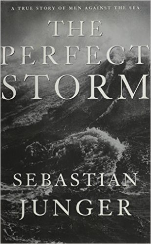 The Perfect Storm book cover